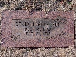 David J Anderson