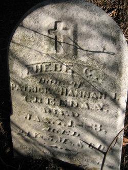 Phebe Catherine Creedon