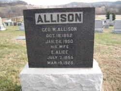 George William Allison