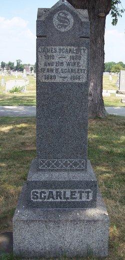 Jean Jane <i>Black</i> Scarlett