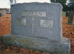 Louisa Elizabeth Lou <i>Estes</i> Green