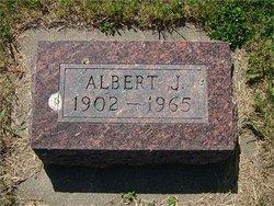 Albert J Dibbert