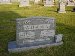 Bunch Adams