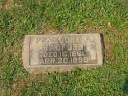 Penelope Porter Nellie <i>Armstrong</i> Radford