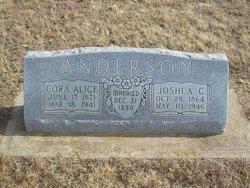 Cora Alice <i>Saylors</i> Anderson