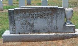 Anne N. Dorsey