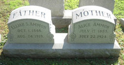 Alice <i>Ritter</i> Ammon