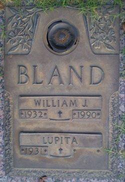 William J Bland