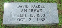 David Andrews