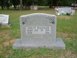 Angus Halligan