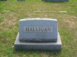 Erwin Halligan