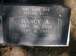 Nancy A Akins