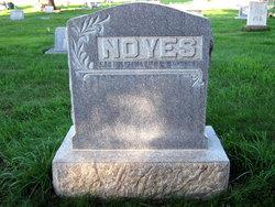 Edward Martin Noyes