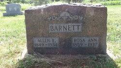 Rosa Ann <i>Cox</i> Barnett