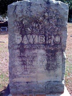 Sarah Jane <i>Hendrick</i> Fambro