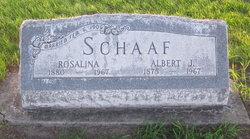 Albert J Schaaf