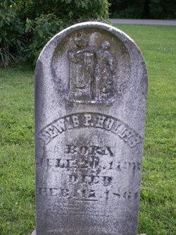 Lewis P. Hollis