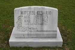 Mitchell Cesario