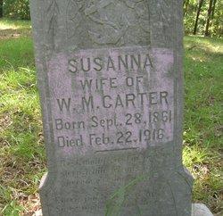 Susanna A <i>Ellisor</i> Carter