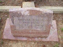 Amanda Rolene <i>Welch</i> Anderson