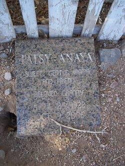 Patsy Anaya