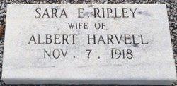 Sara E. <i>Ripley</i> Harvell