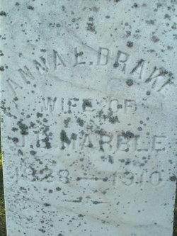 Anna Loveridge <i>Drake</i> Marble
