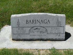 Elvira <i>Pena</i> Barinaga