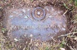 Mrs Patricia J. <i>Ashenbrenner</i> Barnard