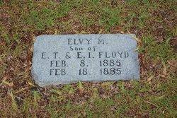 Elvy More Floyd