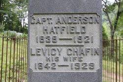 William Anderson Devil Anse Hatfield
