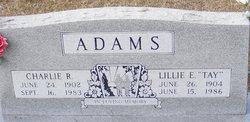 Lillie Elvie Tay <i>Maxey</i> Adams