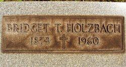 Bridget T Holzbach