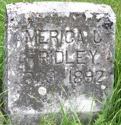 America Jane <i>Mounts</i> Fridley