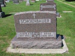 Rose <i>Tuma</i> Schoenbauer