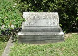 Julius Adler