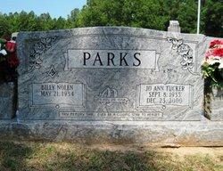 Jo Ann <i>Tucker</i> Parks
