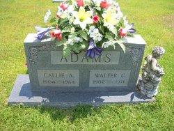 Callie <i>Brewer</i> Adams