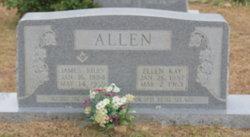 Mary Ellen <i>Kay</i> Allen