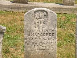 Amos Amspacher