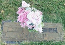 Arlene Ann <i>Cypert Walkup</i> Babb
