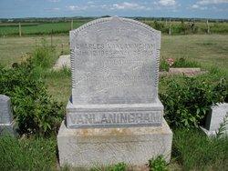 Alice M Vanlaningham