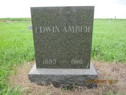 Edward M Ambur