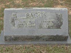 Sarah Elizabeth Sallie <i>Moore</i> Baggs