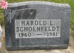 Harold L Schoenfeldt