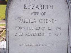 Elizabeth Ann <i>Middlebrook</i> Cheney
