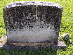 Lucy Josephine <i>Mills</i> Coble
