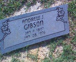 Andrew J Gibson