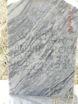 Walter Joseph Hicks