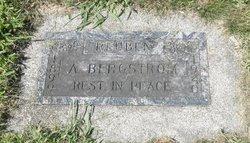 Reuben A Bergstrom